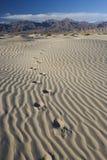 El pie imprime en el â Death Valley - vertical de la arena Imagen de archivo