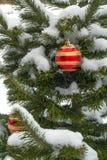 El pino adornado del Año Nuevo en nieve Fotografía de archivo