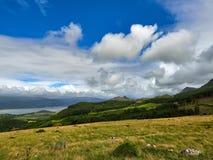 El pino cubrió las colinas de Cader Idris Imagen de archivo libre de regalías