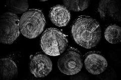 El pino registra el fondo fotografía de archivo