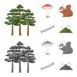 El pino, seta venenosa, árbol, ardilla, vio Iconos determinados de la colección del bosque en la historieta, símbolo monocromátic Fotografía de archivo