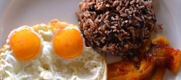 El pinto de Gallo, Costa Rica The la mayoría del plato común para el desayuno es Pinto de Gallo imagen de archivo libre de regalías