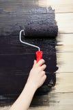 El pintor de la mujer pinta la pared de madera en negro Imágenes de archivo libres de regalías