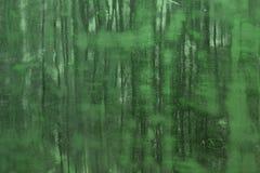 El piso de madera del vintage verde con muchos rasguños texturiza - el fondo abstracto fantástico de la foto libre illustration