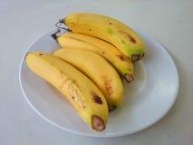 El plátano arregla en placa Fotografía de archivo