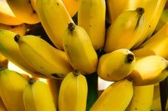 El plátano es la fruta que es poco probable conseguir energía mucho, pero la cree o no, Imagen de archivo libre de regalías