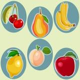El plano de la historieta del vector garabatea las frutas del estilo stock de ilustración