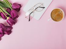 El plano pone en fondo rosado con los tulipanes púrpuras fotos de archivo