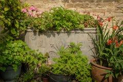 El plantador antiguo de la ventaja llenó de los geranios y de otras flores Imagen de archivo
