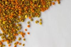 El polen de diversos colores se cierra para arriba Fondo Imagen de archivo
