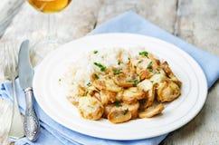 El pollo coció con las setas y el queso con arroz Fotos de archivo libres de regalías