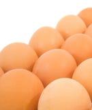 El pollo Eggs I fotos de archivo libres de regalías