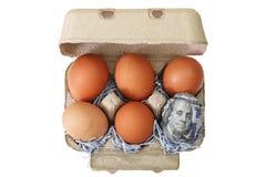 El pollo fresco eggs con uno envuelto en 100 billetes de banco del dólar de EE. UU. Imagenes de archivo
