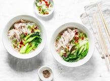 El pollo, tallarines de arroz, hirvió el pollo, bok choi, sopa de la col de las especias en el fondo blanco, visión superior imagen de archivo libre de regalías