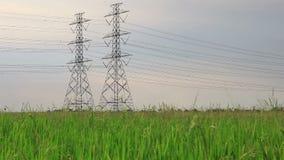 El polo eléctrico, las torres de alto voltaje en verde del arroz archivó el tiro de la grúa del carro metrajes