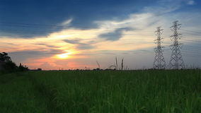 El polo eléctrico, las torres de alto voltaje y la puesta del sol del cielo en verde del arroz archivaron el tiro del carro almacen de metraje de vídeo