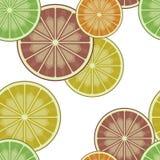 El pomelo anaranjado del limón de la cal corta el modelo Fotos de archivo