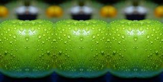 El ponerse verde Foto de archivo libre de regalías