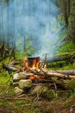 El pote en la hoguera en el campo en el bosque conífero Imagen de archivo
