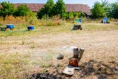 El pote que fuma del ` s del apicultor con humo, se abre en la tierra Fotos de archivo