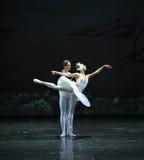 El príncipe y el cisne del lago swan del persistente-ballet Fotos de archivo libres de regalías