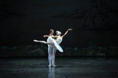 El príncipe y el cisne del lago swan del persistente-ballet Fotografía de archivo libre de regalías