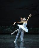 El príncipe y el cisne del lago swan del persistente-ballet Foto de archivo libre de regalías