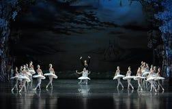 El príncipe y el lago persistente swan del amor-ballet del cisne Foto de archivo libre de regalías
