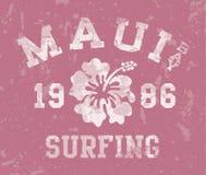 El practicar surf de la bahía de Maui Fotografía de archivo libre de regalías
