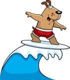 El practicar surf del perro Fotografía de archivo libre de regalías