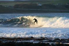 El practicar surf en la puesta del sol Imágenes de archivo libres de regalías