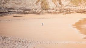 El practicar surf por la mañana Imágenes de archivo libres de regalías