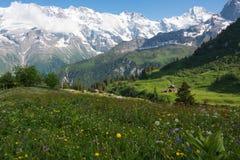 El prado cerca del pueblo del ¼ de MÃ rren, Suiza Fotografía de archivo