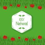El prado colorido del fondo y las flores rojas ajardinan con el logotipo del hexágono del ciento por ciento de natural Fotografía de archivo libre de regalías