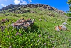 El prado empiedra rocas Foto de archivo