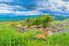 El prado en montaña Foto de archivo