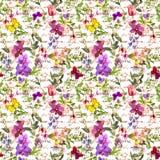 El prado florece, las mariposas con palabras escritas de la mano Fondo floral repetido watercolor Foto de archivo