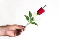 El precio del amor Foto de archivo libre de regalías