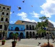 El preguntarse en las calles de La Habana - plaza principal de la ciudad vieja imagen de archivo