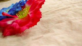 El primer algodón artificial rojo y azul de dos florece Imagenes de archivo