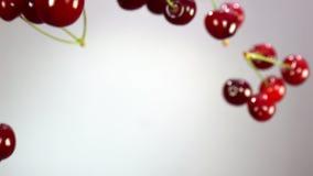 El primer de la cereza gira en el aire almacen de video