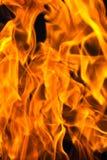 El primer de las llamas Foto de archivo