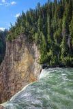 El primer de un Yellowstone más bajo cae en el parque nacional de Yellowstone, Wyoming Bosque y montañas en el fondo Foto de archivo libre de regalías