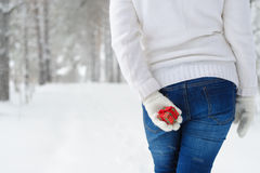 El primer de una mujer detrás de usted sostiene el regalo en sus manos Imagen de archivo