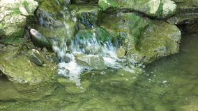 El primer del agua fluye sobre las rocas demasiado grandes para su edad con el musgo Audio incluido metrajes