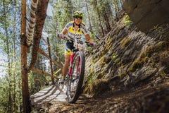 El primer del ciclista del atleta de la mujer monta abajo de la montaña un puente de madera Imagen de archivo libre de regalías