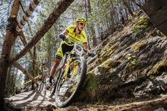 El primer del ciclista del atleta del hombre monta abajo de la montaña un puente de madera Imagenes de archivo