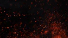 El primer del fuego ardiente, chispea la quema en el fondo negro, c?mara lenta metrajes