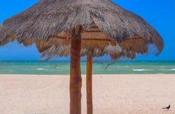 El primer del tiki cubrió con paja los paraguas en la playa con el océano y el cielo muy azul en fondo y un pájaro en la arena en fotografía de archivo libre de regalías