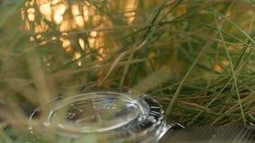 El primer en la hierba verde miente un reloj que se zambulle con ?nfasis en el movimiento de la mano de segundos roja en el negro metrajes